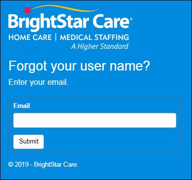 Reset ABS BrightStar Care Login Password
